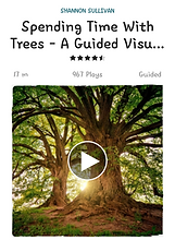 A guided meditation to spend time connecting with trees
