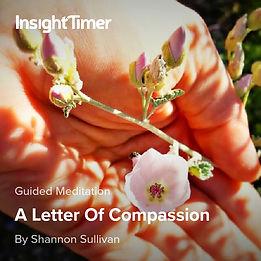 Letter of Compassion Shannon Sullivan Guided Meditation