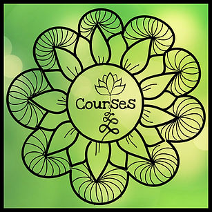 This is a link to the courses I teach about connecting with your intuition.
