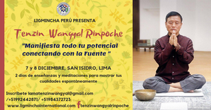 Lama Tenzin Wangyal Rinpoche.png