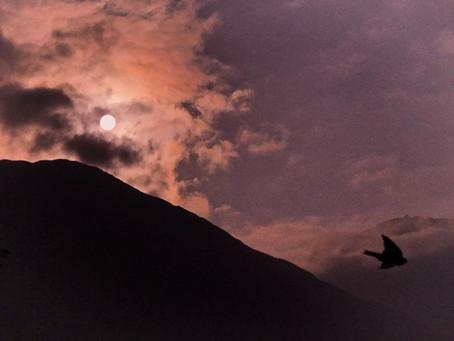 INTI RAYMI, la celebración al retorno del viajero de los cielos, en el hemisferio Sur.