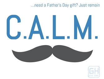 Gear Haiku #87 Father's Day Gifts 101