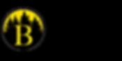 Bayley Realty Group logo horizontal (2).
