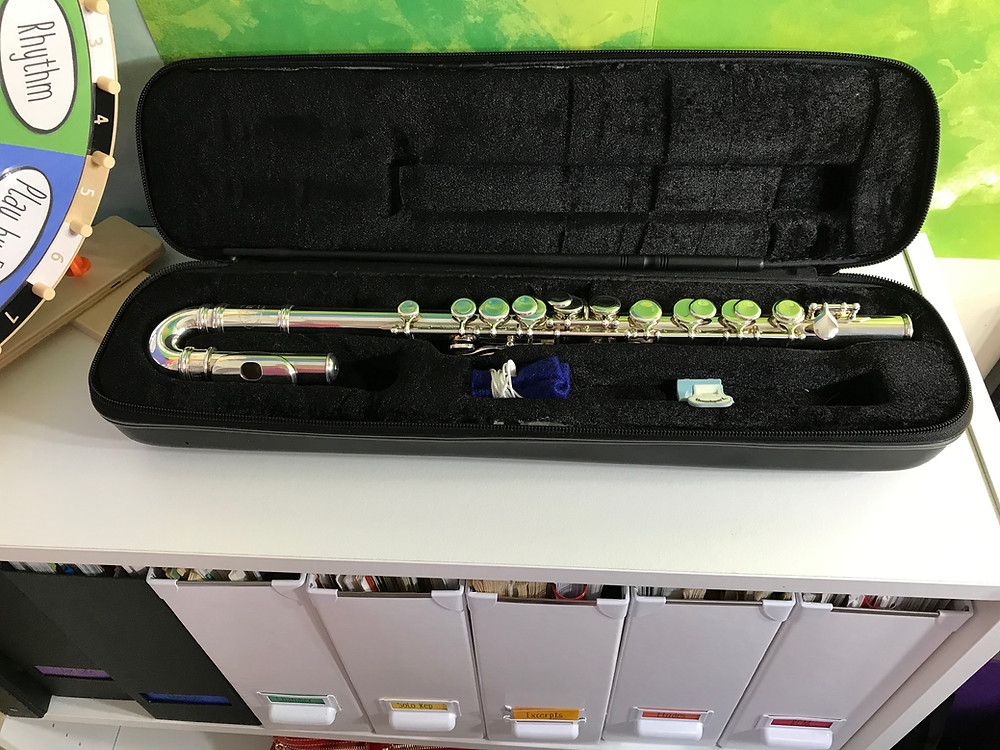 Jupiter Prodigy Flute 313 / 313S in the case with thumbport and cleaning supplie