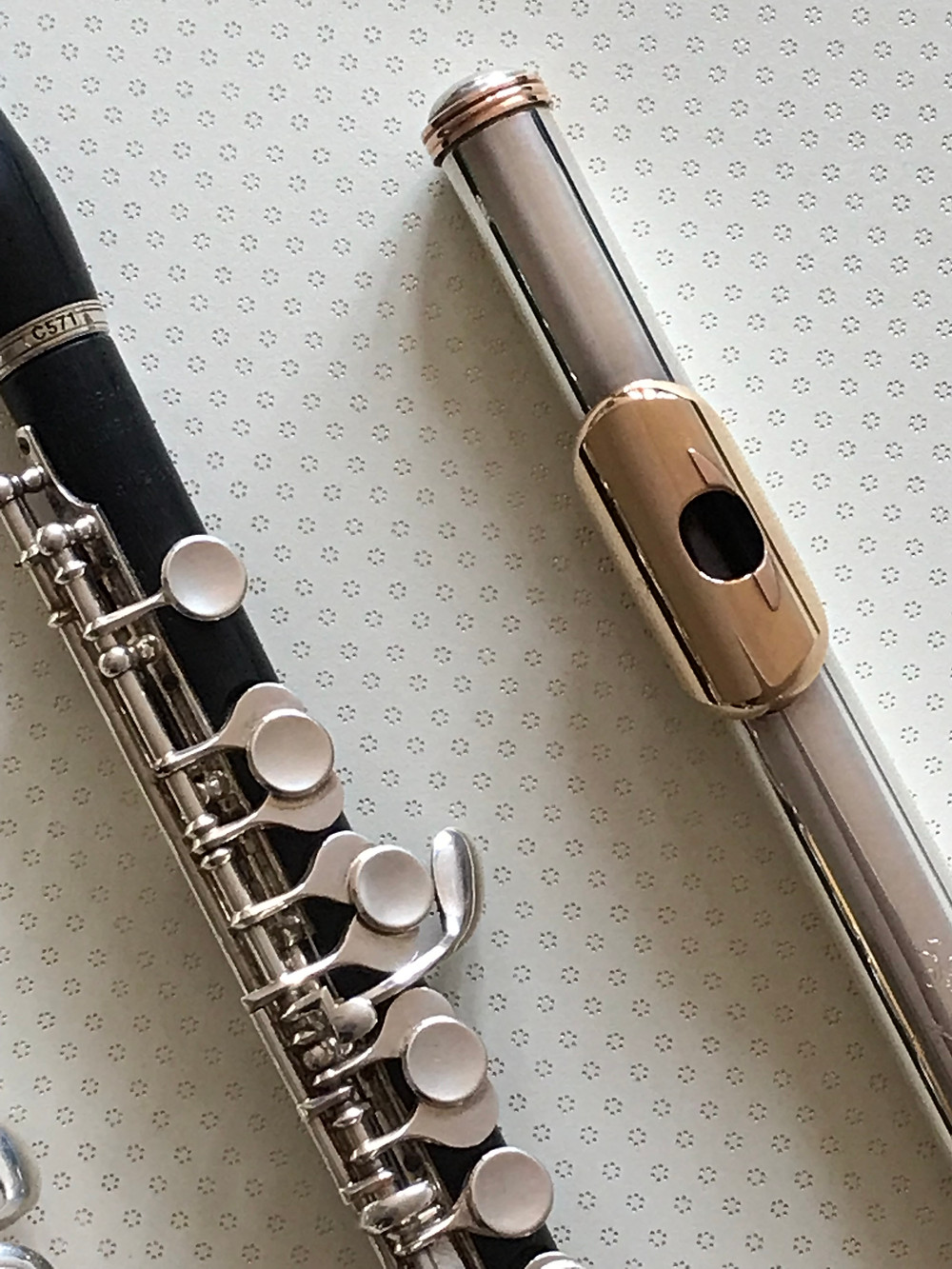 Buying a flute and piccolo