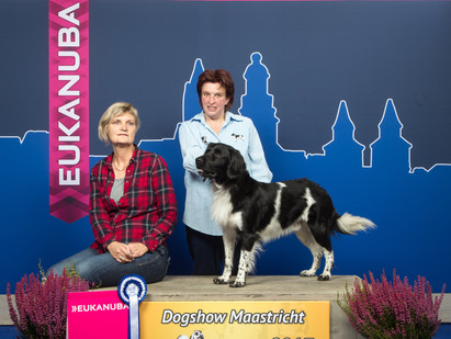 Mees wins Best of Breed at Maastricht