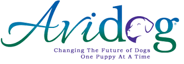 Avidog's Transformational Puppy Evaluation System