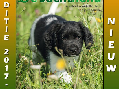 "De Jachthond magazine features ""Alfie"" on cover!"