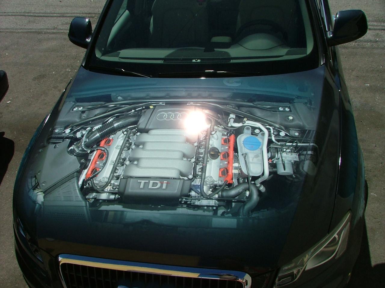 Custom Audi hood wrap