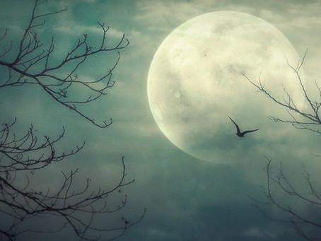 Nieuwe maan 11 februari 2021.