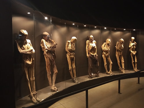 Guanajuato + Museo de Momias + Mina