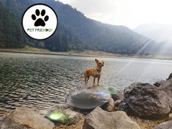 Lagunas de Zempoala Pet Friendly