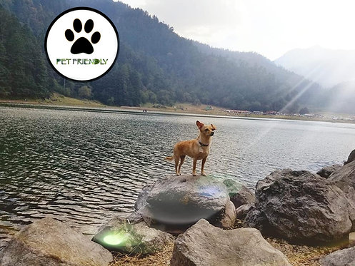 Pet Friendly Lagunas de Zempoala