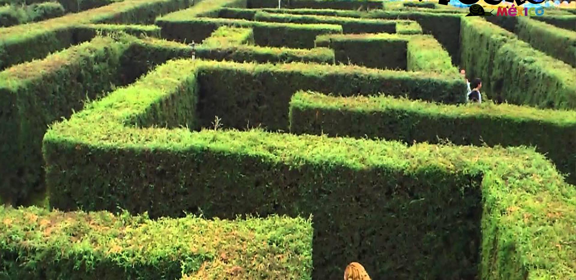 Hacienda Panoaya 3.jpg