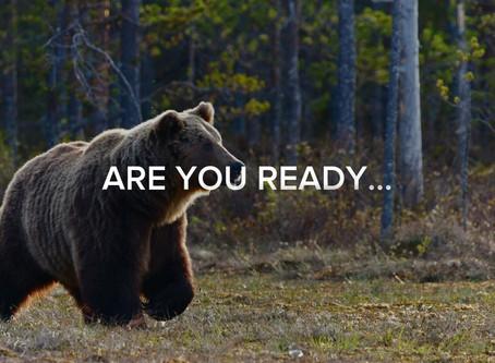 WATCH IT NOW   New @ WOLF + BEAR