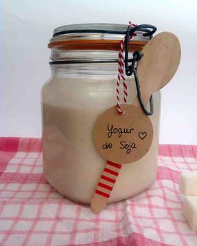 Yogur casero de Soja