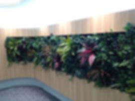 壁面緑化の造花