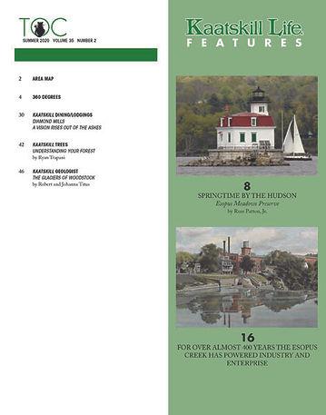 Cover Indes Summer 2020.jpg