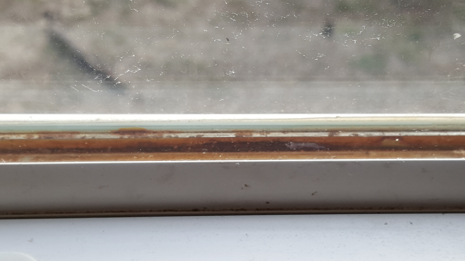 A window with a failed thermal seal_