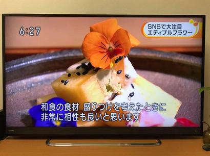 awakosai_edibleflower_NHK_5.jpg