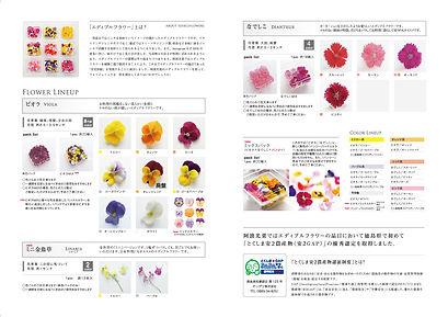 awakosai_edibleflower_catalog2019_in_2-0