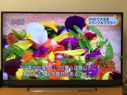 awakosai_edibleflower_NHK_3.jpg