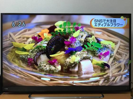 awakosai_edibleflower_NHK_4.jpg