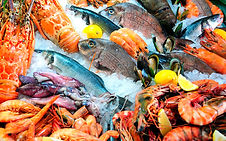 Seafoods_Fish_Food_Shrimp_Crayfish_54298