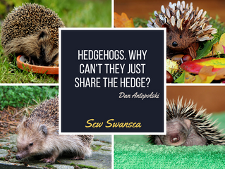Hedgehogs. Why can't they just share the hedge?