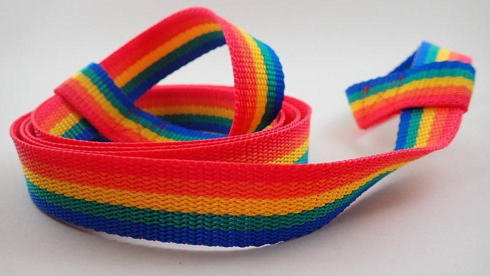 Rainbow -skate leash