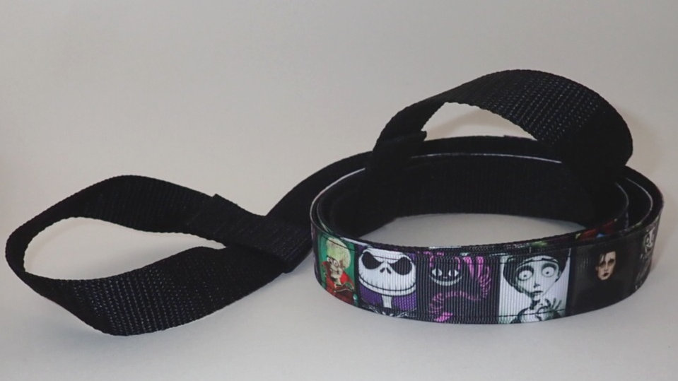 Frightful with a sense of whimsy-Skate leash