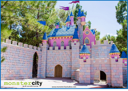 Opportunity Village Magical Forest Castle