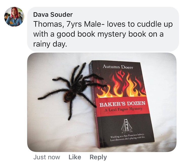 Spider, book promotion, Baker's Dozen