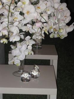 flowers for website3