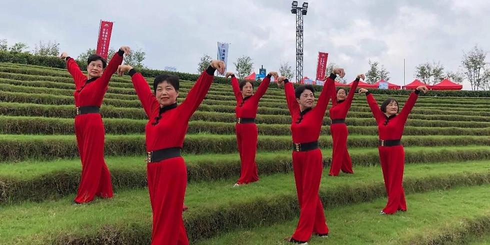 Curso Yi QI GONG – Continuação do Lian Gong em 18 Terapias