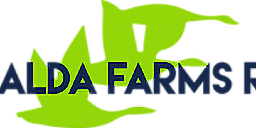 Giralda Farms Open Men's & Women's Championship 10k 2020