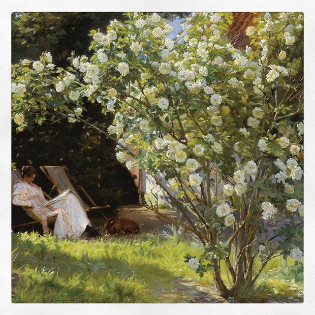Roses, Krøyer