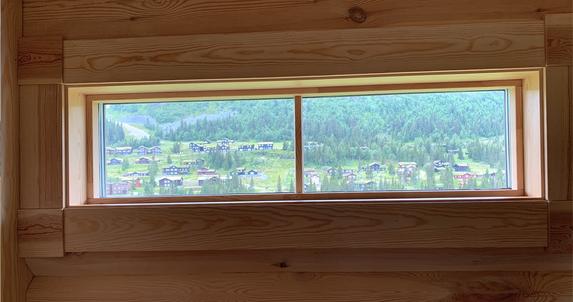 View through kitchen windows.png