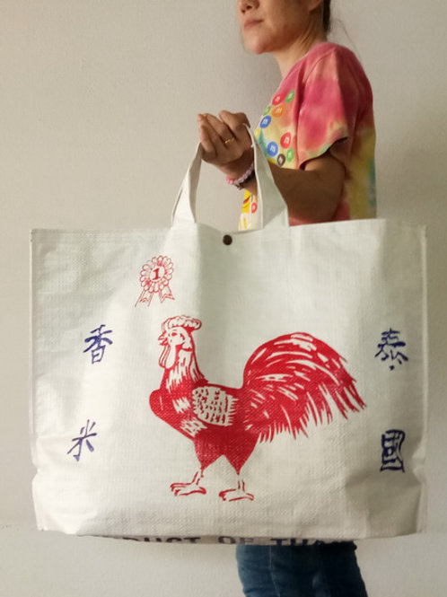 Recycle shopping bag w/liner2/015