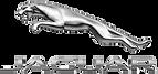 Jaguar Detailing - Central Pa
