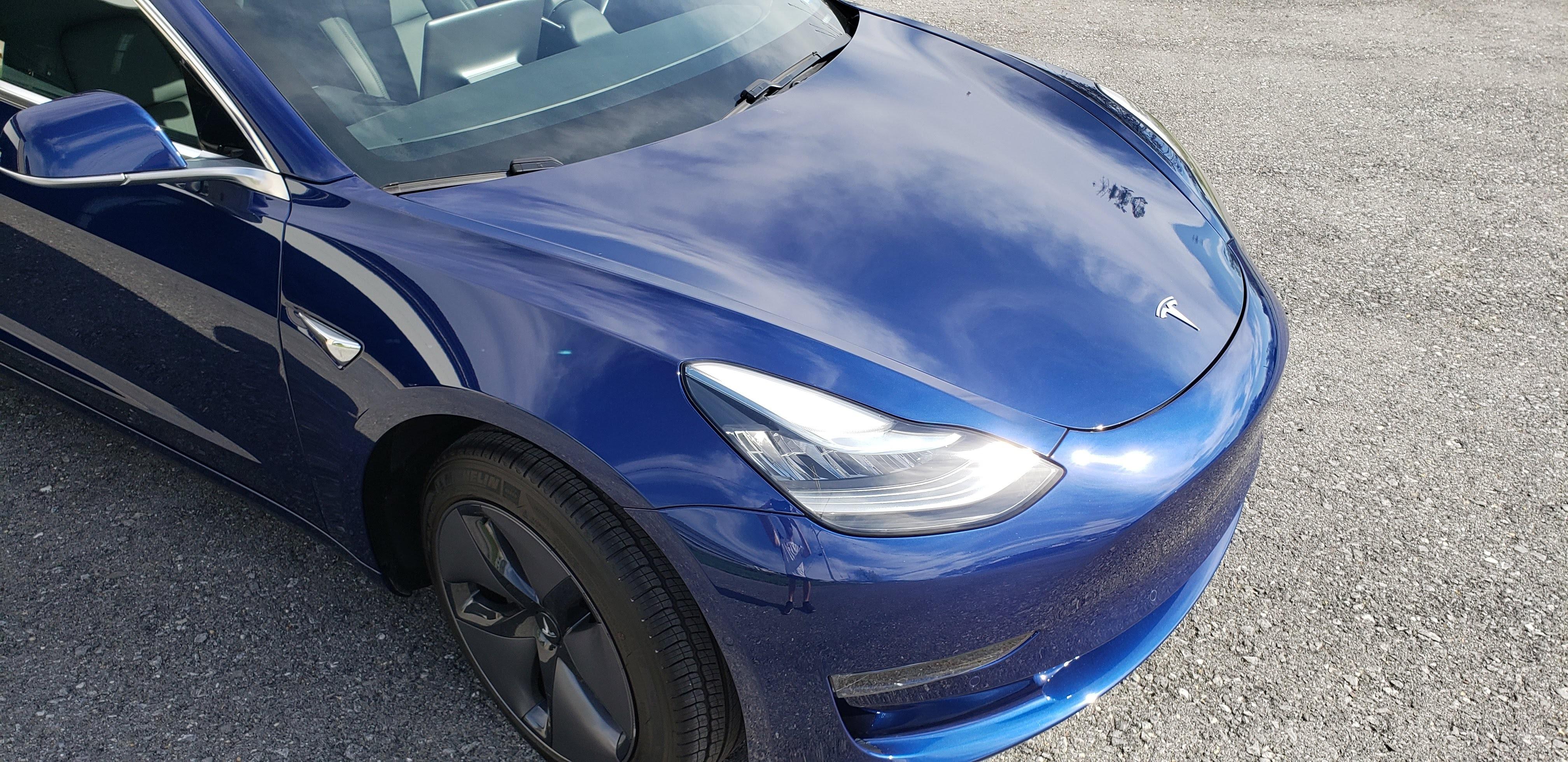 XPEL Paint Protective Film - Tesla