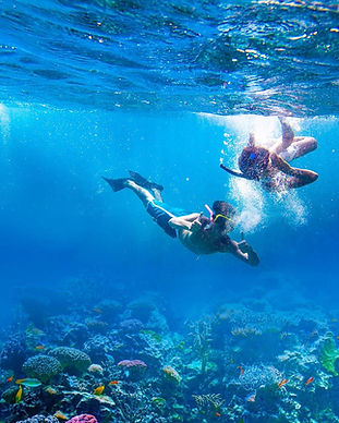 Couple-Snorkaling.jpg