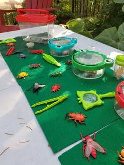 toddler bug activity.jpg