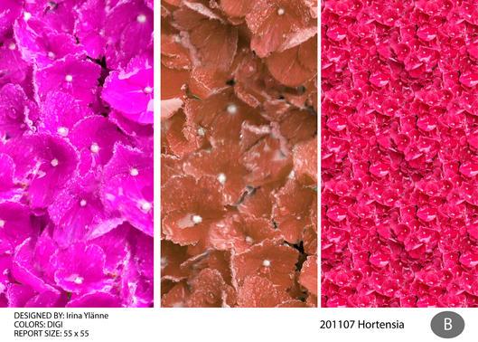 irina 201107 hortensia-02.jpg