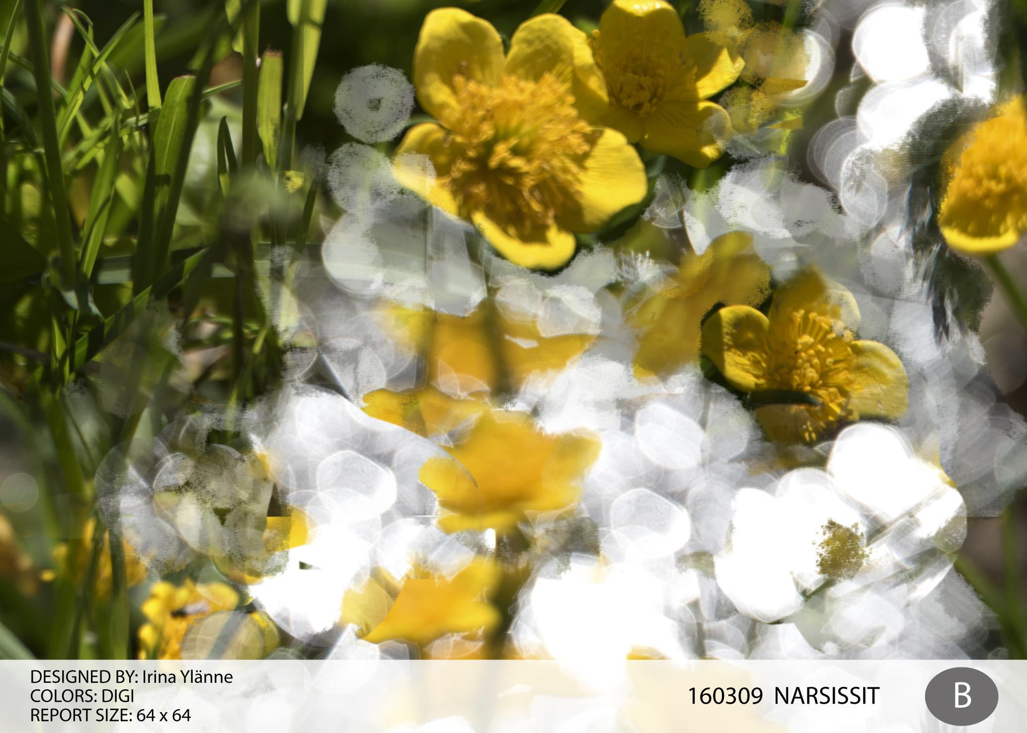 irina_narsissit-01
