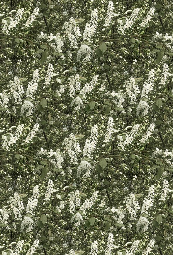 160308 Kukkiva puu, repeat col3