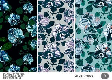 irina_orhidea_200208-02.jpg