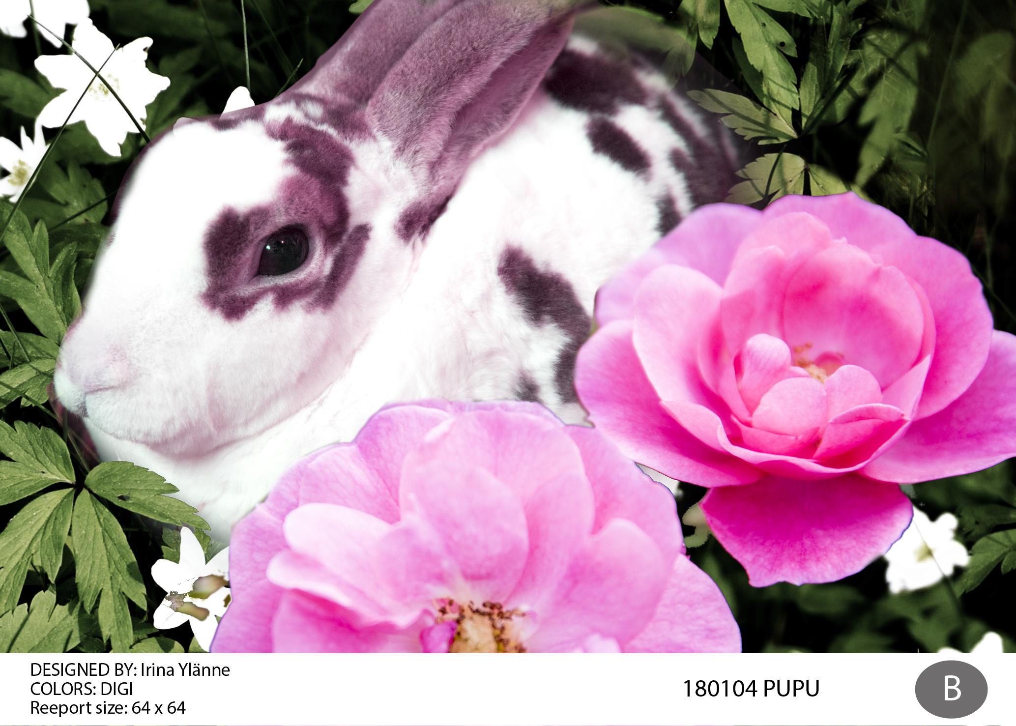 irina 180104_pupu-01