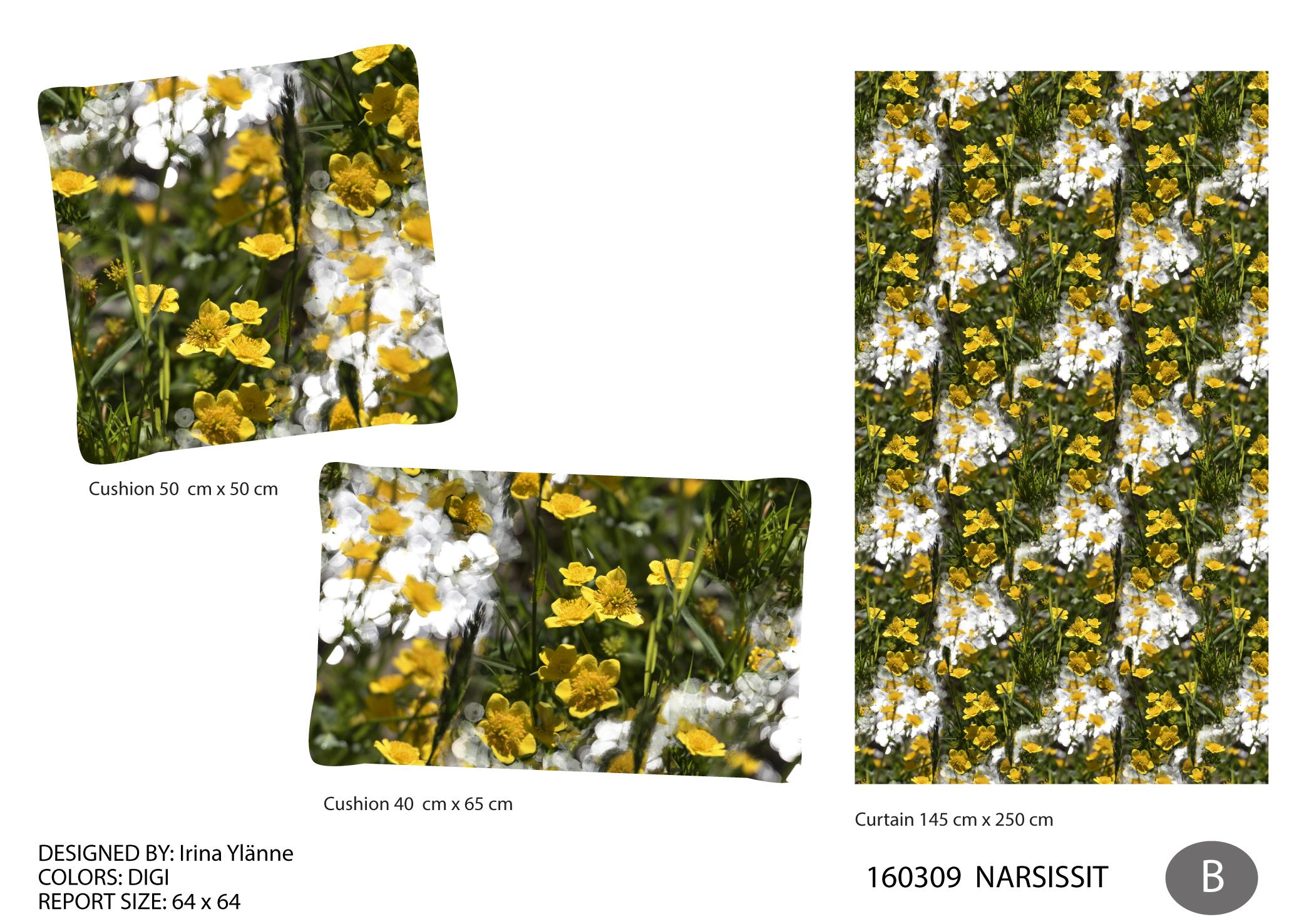 irina_narsissit-02