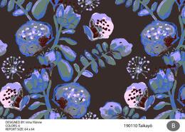 irinas_taikayo_190110-01.jpg